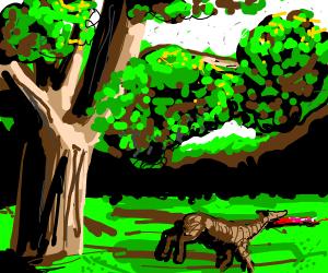 animal dies next to tree