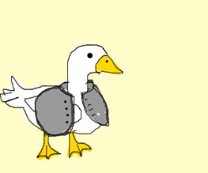Goose wearing a Coat