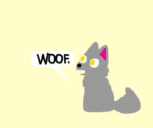 wolf saying woof