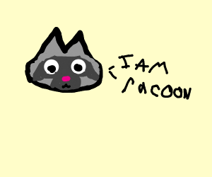 Racoon is a Racoon