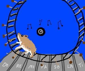 Running Hamster on Music Wheel