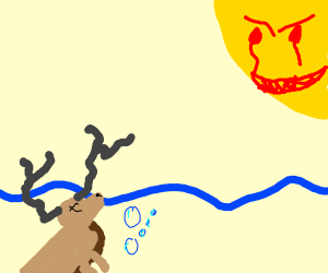 Moose drowning while cool sun watches