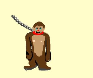 Pet Ape