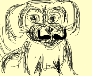 A dog with a mustache