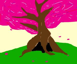 The confession tree (yandere)