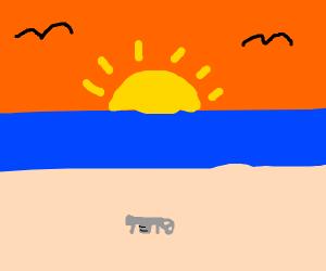 gun on beach