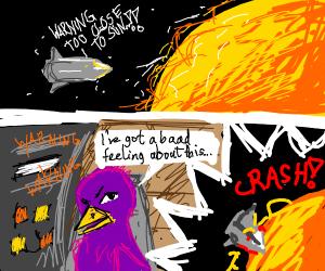 bird got too close to the sun