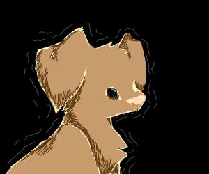 Trembling puppy