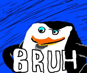 skipper the penguin says bruh
