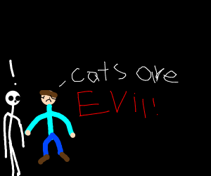 Man believes cats are evil