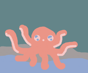 excited octopus