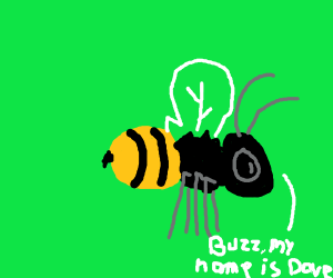Bee is named dave