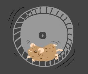 Hamster running on an exercise wheel