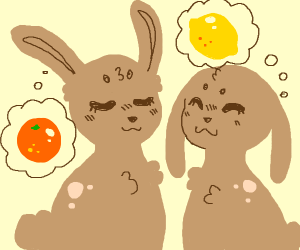 cute bunnies thing about citrus fruits