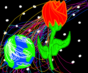 Galaxy rose and red rose