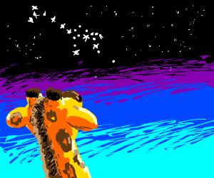 giraffe looks at giraffe shaped constellation