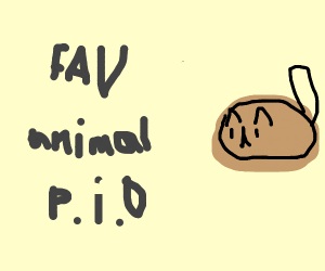 Favorite Animal Pass it on(Cat)