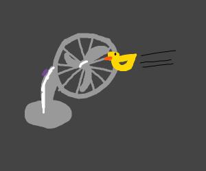 The Duck hit the fan :O
