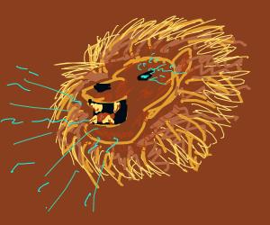 Aslan gives a roar!!!