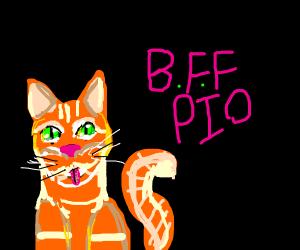 BFF P.I.O