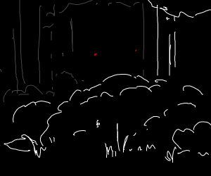 Eyes stare at you from a dark forest
