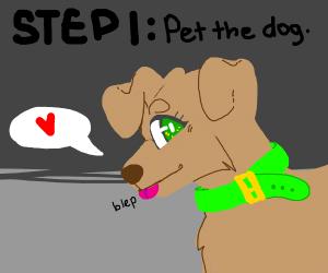 step 2: name the dog