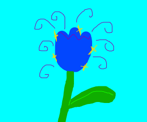 A blue magical flower