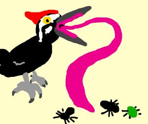 Woodpecker doin' dat woodpecker thang.