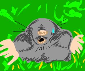 Sad mole