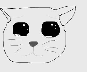 Crying kitty unu