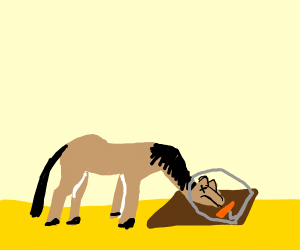 A horse in a mouse trap