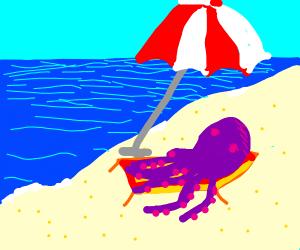 an octopus on the beach
