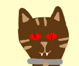 Brown cat with red eyes