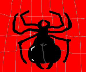 spider-thicc