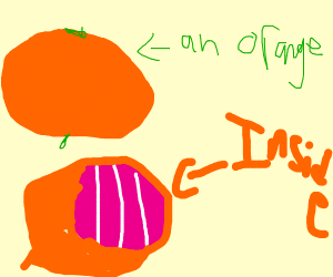 an orange is pink on the inside >8O