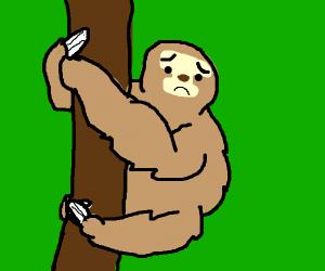 Salty sloth