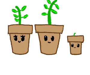 Happy Plant Bowl Family