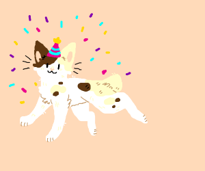 Calico cat with a party hat
