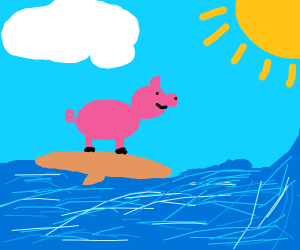 Pig surfing in the sea