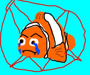 Sad, poor, demonic Nemo.
