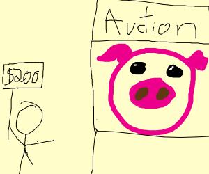 A price winning Pig