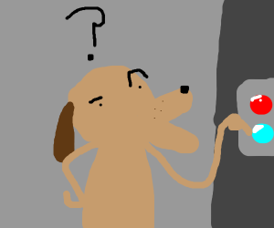Dog dont know whitch button to press