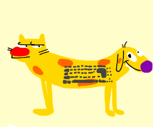 Keyboard cat dog