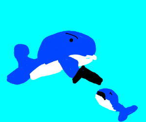 Whale Shoots Another Whale