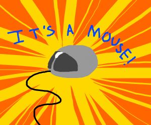 It's a mouse - a computer mouse