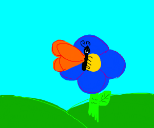 Freindly butterfly on a flower