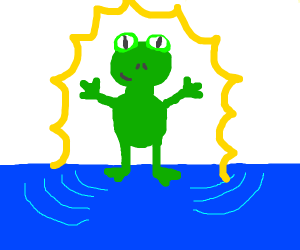 Frog standing on water