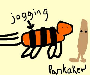 Tiger jogging with Pancakes