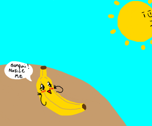 banana is in love with the sun