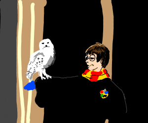 Harry Potter and Hedwig.